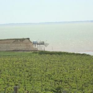 Accessoires vin et cave